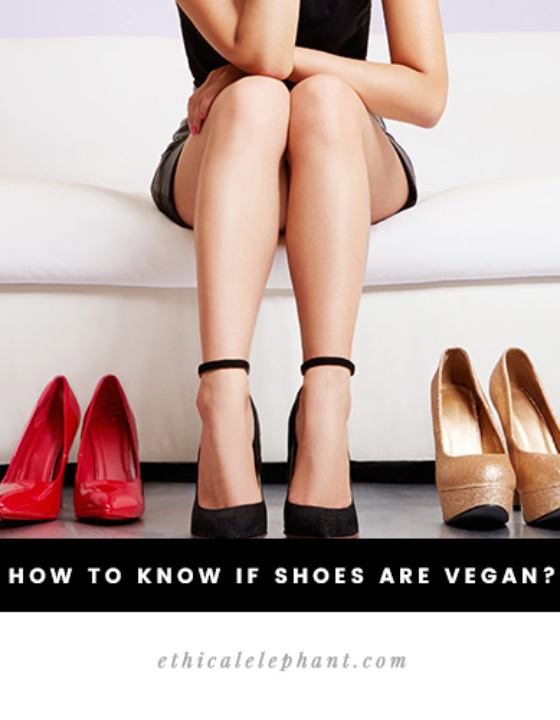 How to Know if Shoes are Vegan? A Quick & Easy Guide!