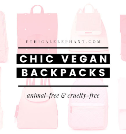 Check Out These 18 Chic Vegan Backpacks