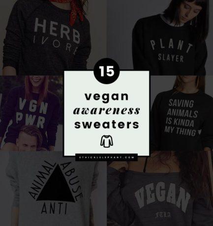 15 Cute and Cozy Vegan Awareness Sweaters