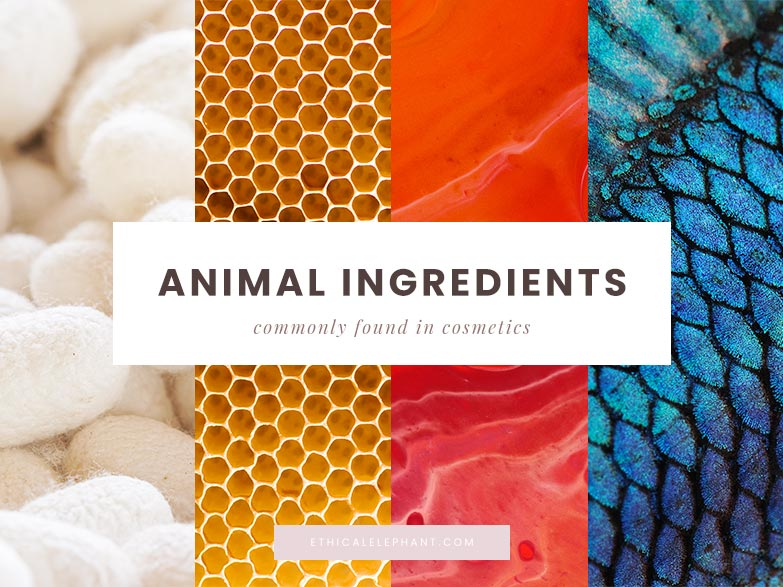 These Common Animal Ingredients Used in Cosmetics are Not Vegan