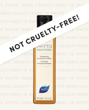 Is Phyto Cruelty-Free in 2020? (What You Need To Know Before You Buy!)