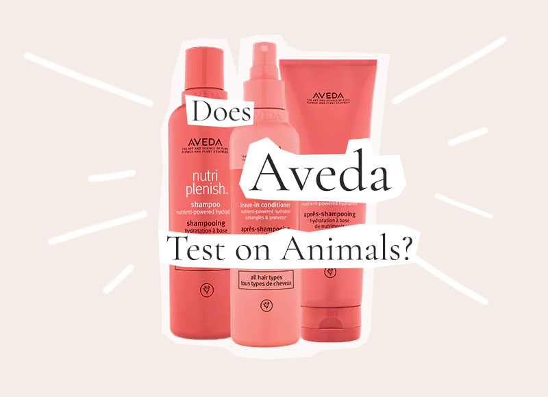 Does Aveda Test on Animals or is Aveda Cruelty-Free?