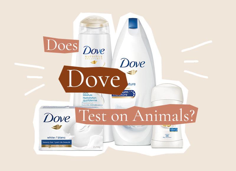 Is Dove Cruelty-Free?