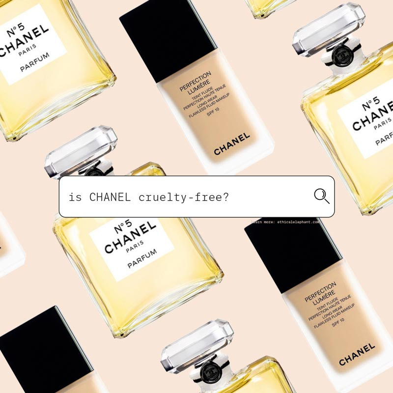 Is Chanel Cruelty-Free?