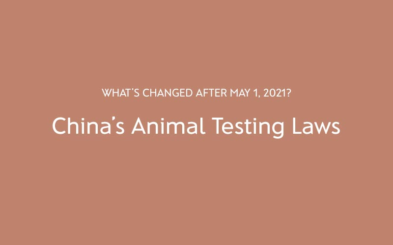 China's Animal Testing Laws: What's Changed After May 1, 2021?